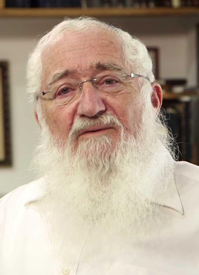 הרב ולדמן